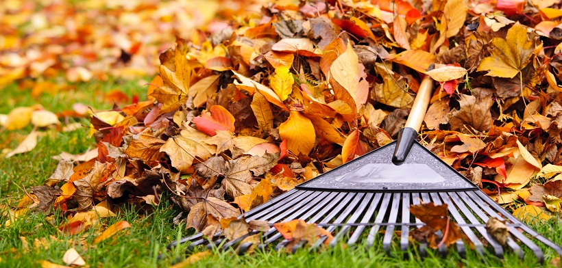 5 Ways to Fast-Track Fall Maintenance